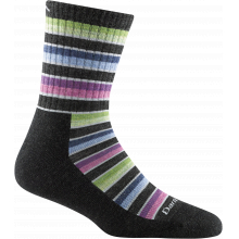 Women's Decade Stripe Micro Crew Midweight with Cushion by Darn Tough