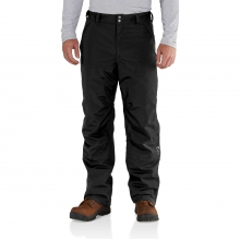 Insulated Shoreline Pant by Carhartt