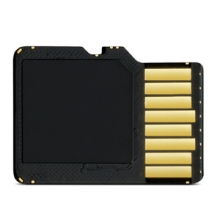Garmin 8 GB microSD Class 4 Card with SD Adapter
