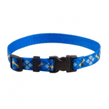 Lupine Collar Strap - Dapper Dog by Garmin in Smithers Bc