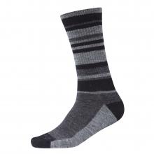 Multi Stripe Sock by Ibex
