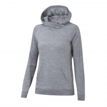 Women's Latitude Hoody by Ibex in Okemos Mi