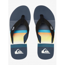 Young Men's Molokai Layback by Quiksilver in Squamish BC