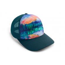 Artist Series Hat by Ruffwear