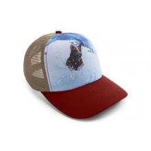 Artist Series Hat by Ruffwear in Victoria Bc