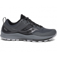 Men's Peregrine 10 GTX by Saucony in Squamish BC