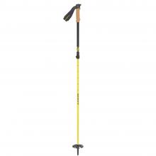 Cascade 2-part Ski Pole by SCOTT Sports