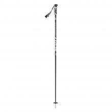 Pro Taper SRS Ski Pole