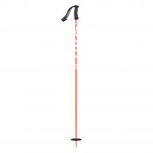 Punisher Junior Ski Pole by SCOTT Sports
