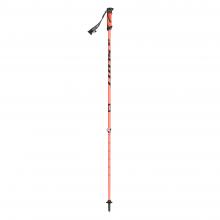 Riot 16 2-part Ski Pole