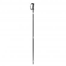 Strapless S Ski Pole
