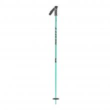 Team Issue Ski Pole