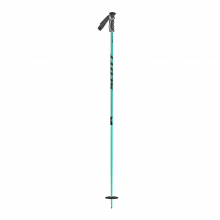 Team Issue Ski Pole by SCOTT Sports