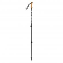 Triple Direct Cork Ski Pole