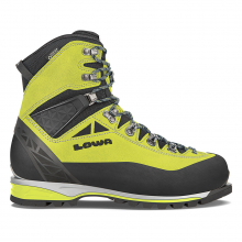 Men's Alpine Expert GTX by LOWA Boots in Iowa City IA