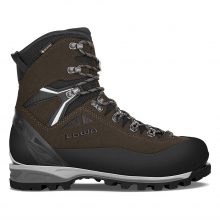 Men's Alpine Expert II GTX