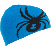 Spyder Mens Reversible Innsbruck Hat by Spyder