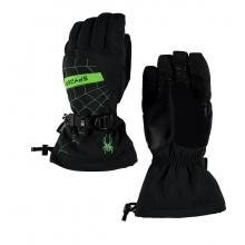 Men's Overweb Gore-Tex Ski Glove
