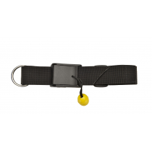 Quick Release Belt by Astral