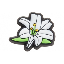 Lily Flower by Crocs in Münster