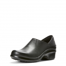 Women's Hera Expert Clog by Ariat in Knoxville TN