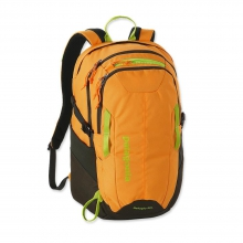 Refugio Pack 28L by Patagonia in Holland Mi