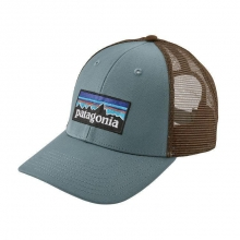 P-6 Logo LoPro Trucker Hat by Patagonia in Hope Ar