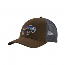 Fitz Roy Bison LoPro Trucker Hat by Patagonia in Iowa City IA