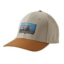 '73 Logo Roger That Hat by Patagonia in Beacon Ny