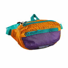 LW Travel Mini Hip Pack by Patagonia in Ames Ia