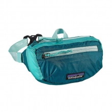 LW Travel Mini Hip Pack by Patagonia in Colorado Springs Co