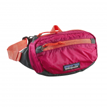 LW Travel Mini Hip Pack by Patagonia in Alexandria La