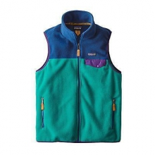 Men's LW Synch Snap-T Vest by Patagonia in West Linn Or