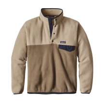 Men's LW Synch Snap-T Pullover by Patagonia in Glen Mills Pa