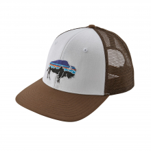 Fitz Roy Bison Trucker Hat by Patagonia in Iowa City IA