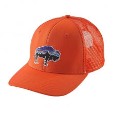 Fitz Roy Bison Trucker Hat by Patagonia in Austin Tx
