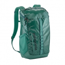 Black Hole Pack 25L by Patagonia in Evergreen Co