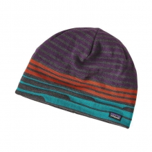 Beanie Hat by Patagonia in Holland Mi