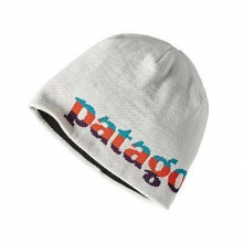 Beanie Hat by Patagonia in Seward Ak