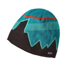 Beanie Hat by Patagonia in Chandler Az