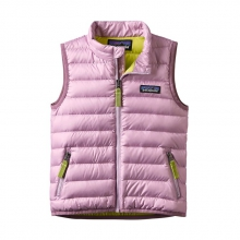 Baby Down Sweater Vest by Patagonia in Sioux Falls SD