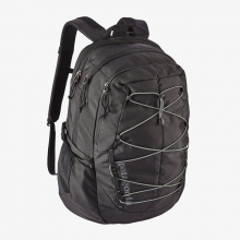 Chacabuco Pack 30L by Patagonia in Knoxville TN