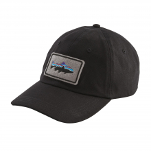 Fitz Roy Trout Patch Trad Cap by Patagonia in Delray Beach Fl