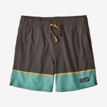 Men's Stretch Wavefarer Volley Shorts - 16 in by Patagonia in Sioux Falls SD