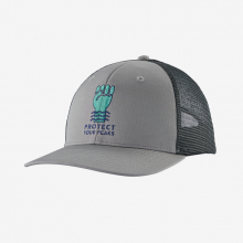 Protect Your Peaks Trucker Hat by Patagonia in Thornton CO