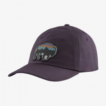 Back for Good Trad Cap by Patagonia