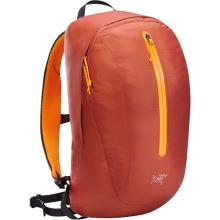 Astri 19 Backpack