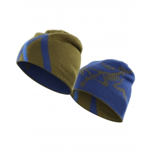 Arc Mountain Toque by Arc'teryx in Jonesboro Ar