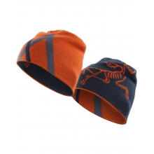 Arc Mountain Toque by Arc'teryx in Stamford Ct