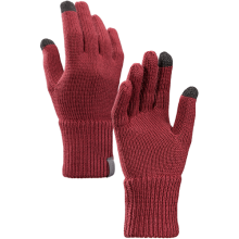 Diplomat Glove by Arc'teryx in Seward Ak